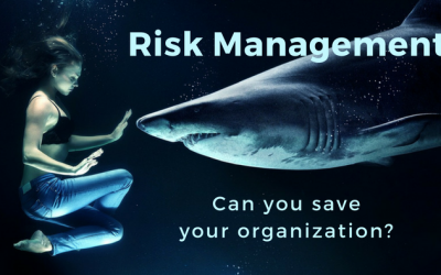 Risk Management:  Can You Save Your Organization?